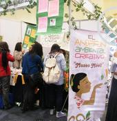 proyectoImaginación en movimiento: empresas y emprendimientos culturalesde México